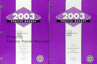 Chevrolet Tracker 2003 Service Manual