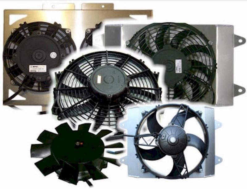 fans-3.jpg
