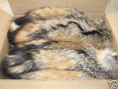 Lot of 50 Natural American Grey Fox Fur tails 14''-17''