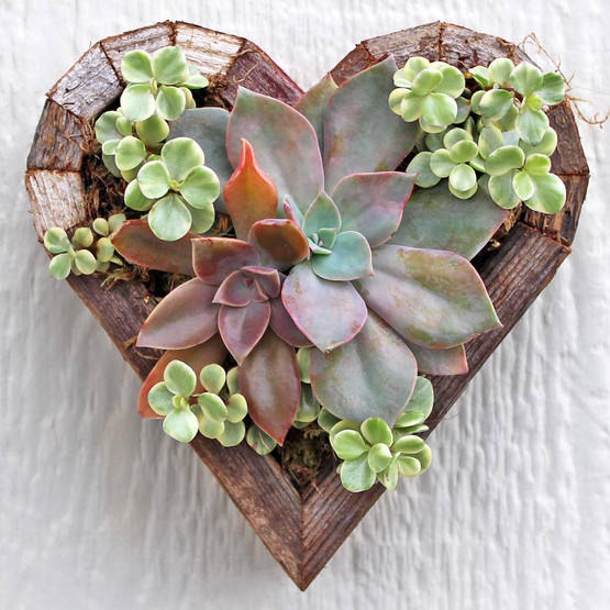 Vertical Planter - Small Heart - Planted