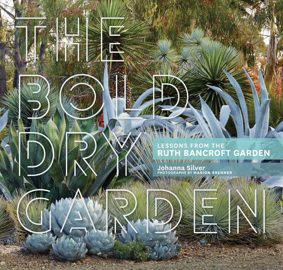 The Bold Dry Garden: Lessons from the Ruth Bancroft Garden (Book)