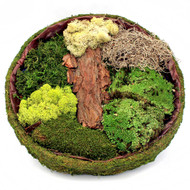 "Fairy Garden Basket Kit 15"" x 2.5"""