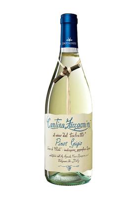 Zaccagnini Pinot Grigio