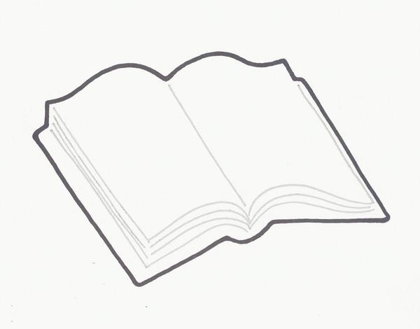 BIBLE / BOOK OPEN