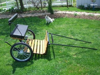 #174    Easy Entry Cart with Wood Floor and Metal Shafts