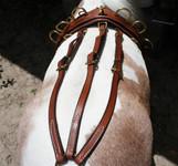 #296  Leather Bitting Rig-1 Strap Turnback Strap