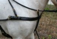 #273  Rolled Show Harness