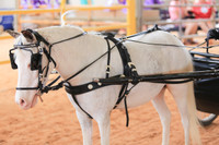 #272-S Western Country Show Harness - Silver
