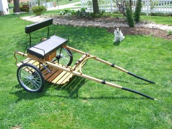 #172     Wood Pleasure Cart with Wooden Shafts