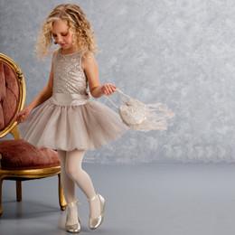 Biscotti Luminous Lace Tulle Skirt Dress - Gold