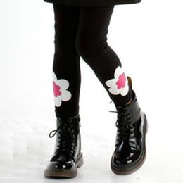 Biscotti Bright Accent Legging - Black / Ivory