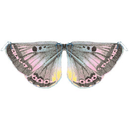 Paper Wings Butterfly Wings - Multi