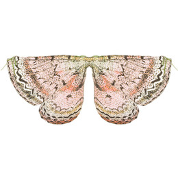 Paper Wings Butterfly Wings - Pink Multi