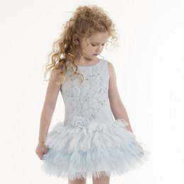 Biscotti Young Romance Drop Waist Dress - Blue