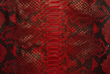 Python Skin Diamond BCUB Matte Red