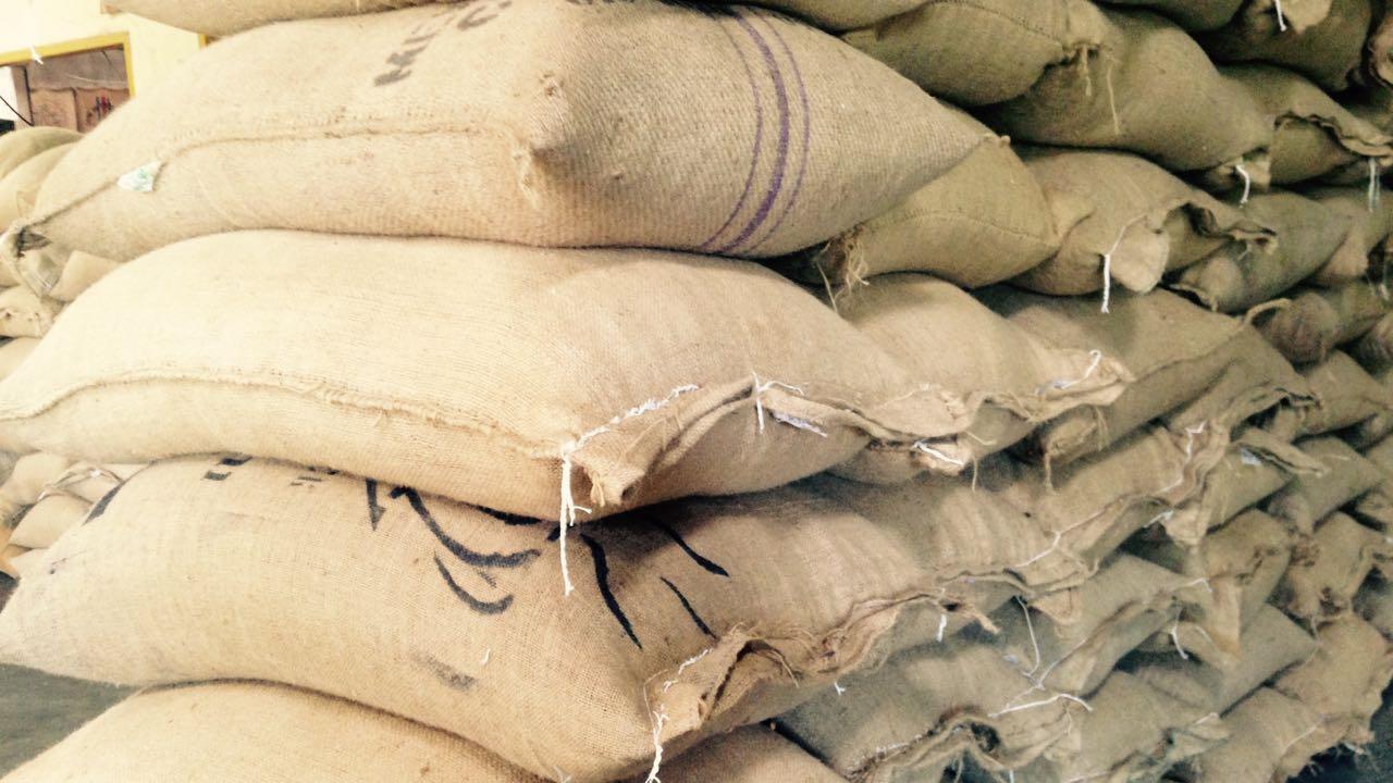 Artisan Coffee Micro Roasted Probe