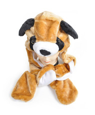 6pc Pre-Pack Animal Hats With Paw - Brown Puppy AHP011256