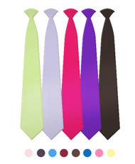 """Boy's 8"""" Poly Solid Clip On Tie BSCT4601"""