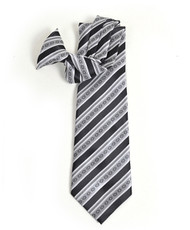 Microfiber Poly Woven Clip-On Tie MPWCL4600