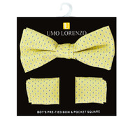 Boy's Fancy Bow Tie and Hanky Set BFTH3023