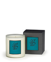 Archipelago AB Home Collection Large Agave Soy Candle