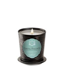 Aquiesse Portfolio Collection Coastal Hyacinth Tin Candle With Matchbook