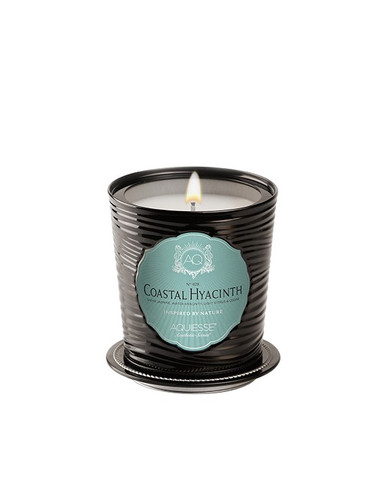 Aquiesse Portfolio Collection Coastal Hyacinth Tin Candle With Matchbook