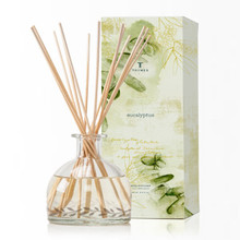 Thymes Eucalyptus Collection Reed Diffuser