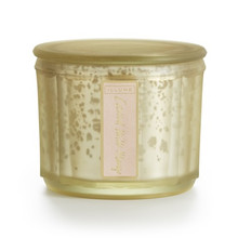 Illume Coconut Milk Mango Lustre Jar Candle