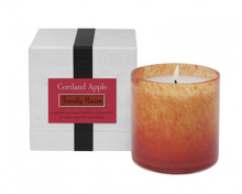 LAFCO Family Room/Cortland Apple House & Home Glass Candle