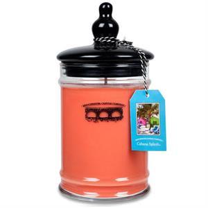 Bridgewater Candle Company Cabana Splash Large Glass Jar Candle