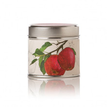 Rosy Rings Spicy Apple Soy Tin Candle