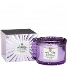 Voluspa Vermeil Collection Aurantia & Blackberry Boxed Candle