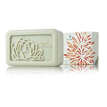Thymes Agave Nectar Collection Bar Soap