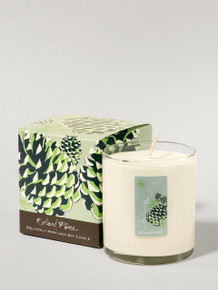 Soap & Paper Roland Pine Soy Candle