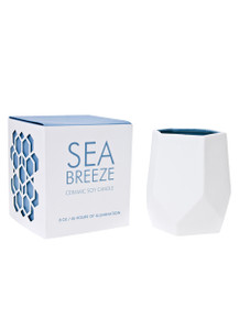 D.L. & Co. Sea Breeze 8 oz. Abstract Candle