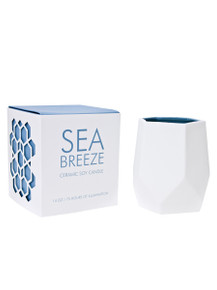 D.L. & Co. Sea Breeze 14 oz. Abstract Candle