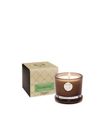 Aquiesse Portfolio Collection Pacific Lime Small Soy Candle