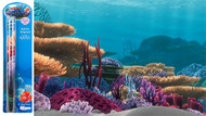 Penn Plax Finding Nemo Ocean Floor Scenery Background 20-Gallon