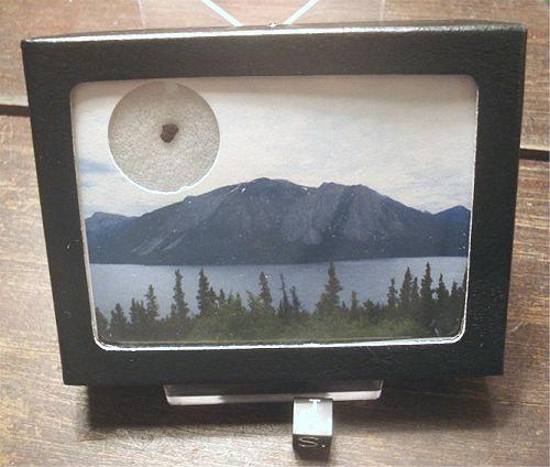 Tagish Lake Meteorite, Exotic Ungrouped Carbonaceous Chondrite