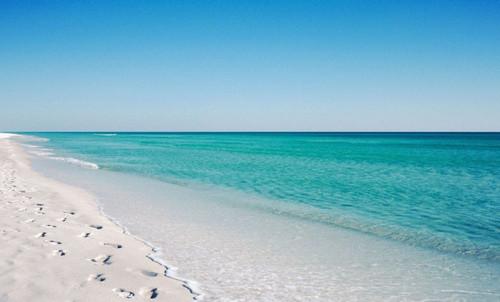 Gulf Coast Florida Beach Sand, Pearly White Sugar Sand