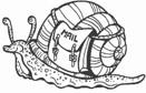 Snail Mail - 18A05
