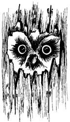 Owl - 11A14