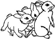 Bunnies - 4A17