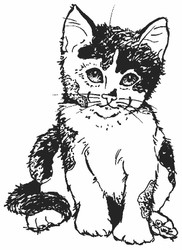 Calico Kitten Rubber Stamp - 20A07