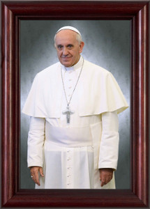 Pope Francis Casual Portrait