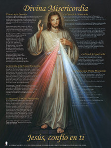 Spanish Divine Mercy Explained Poster
