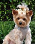 American River Ultra Choke Free Dog Harness - Beige