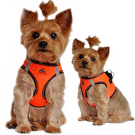 American River Top Stitched Collection Dog Harness - Iridescent Orange