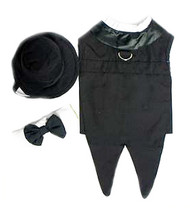 Black Dog Tuxedo w/Tails, Top Hat & Tie